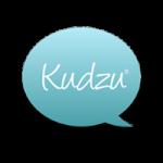 Seattle SEO Company Kudzu